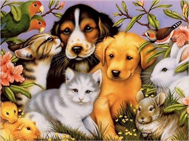 Открытки с животными и людьми