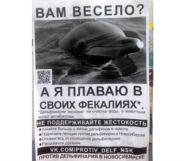 петиция против передвежнных дельфинариев правда, подцепите чего-нибудь
