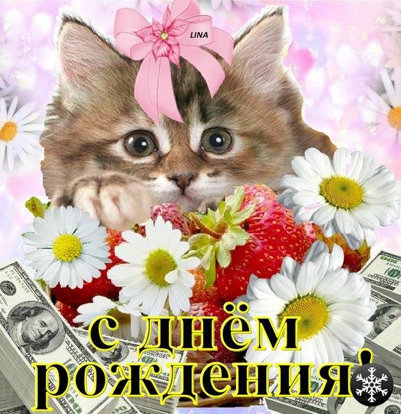 картинки с днем рождения котики