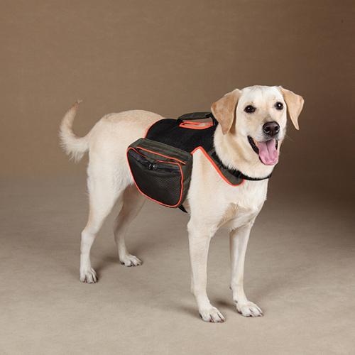 Фото рюкзаки для собак тортис рюкзаки цена