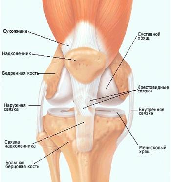 разрыва мениска коленный артрит вывих коленной чашечки.  Болевые симптомы, нуждающихся в лечении.