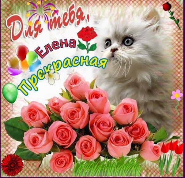 Поздравления с днем рождения лены открытки, открытки розами