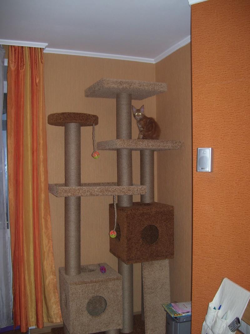 Кошачий домик угловой своими руками 79