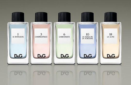 Где можно потестить всю линейку женских ароматов The D&G Anthology ...