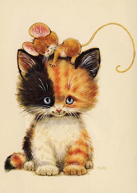 Картинки открытки кошки