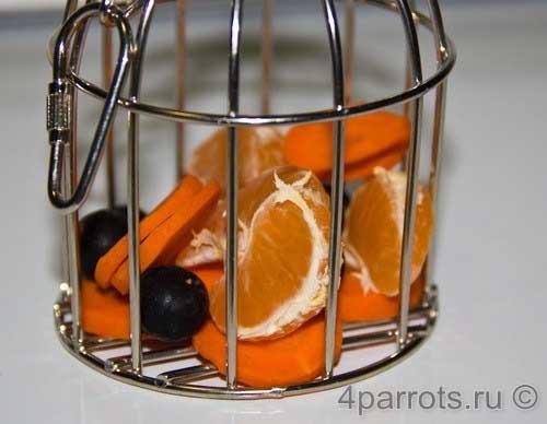 Держатели для фруктов для попугаев своими руками