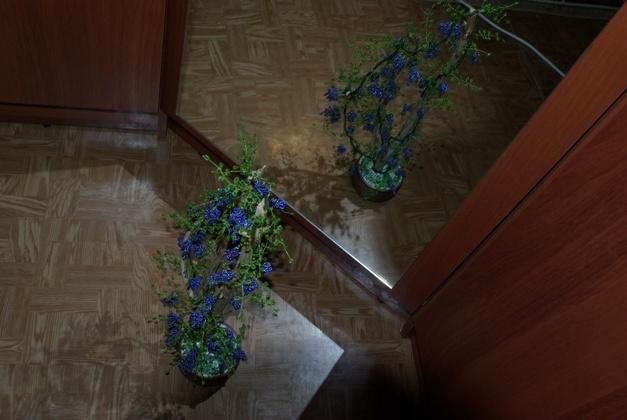 Превращаю время в сувениры. продам готовые деревья из бисера (бонсай, рябины, виноград) , высота от 15см...