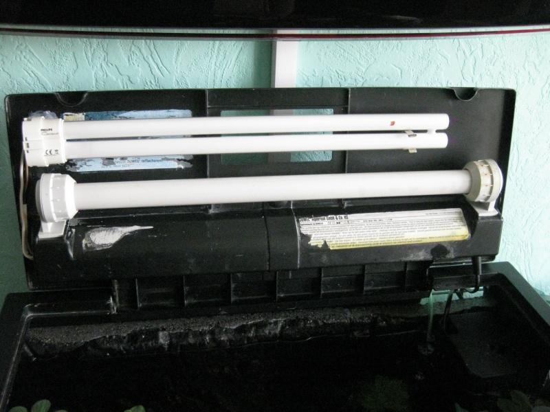 Купи RX 580 RX 570 и RX 560 или Ryzen 7 5 и играй в