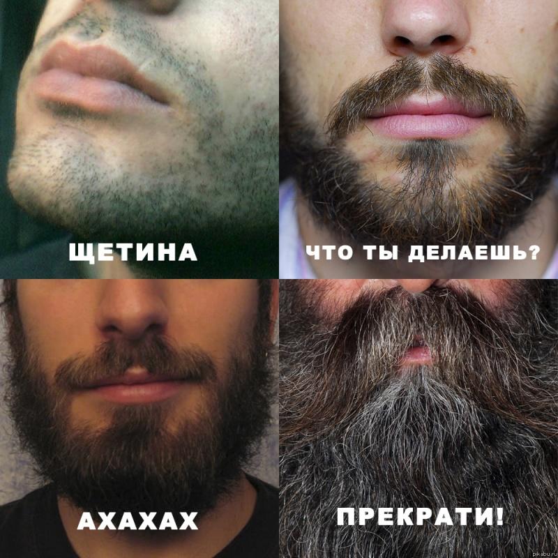 Чтобы борода была гуще в домашних условиях