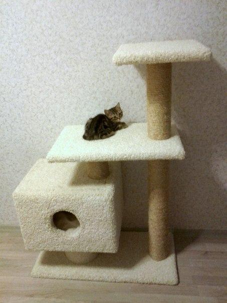 Кошачья когтеточка с домиком своими руками