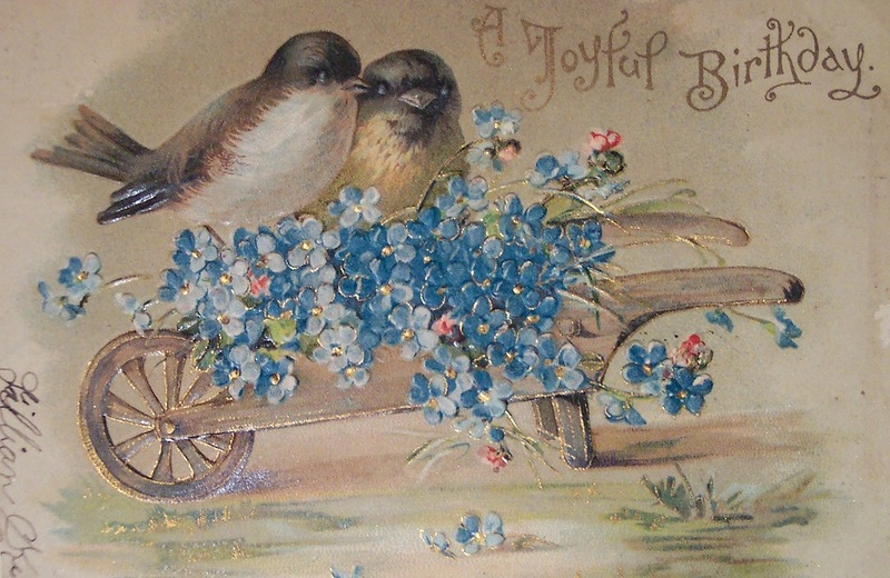 необычного картинки с днем рождения птица торт водкой